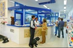 Clínicas veterinarias teran