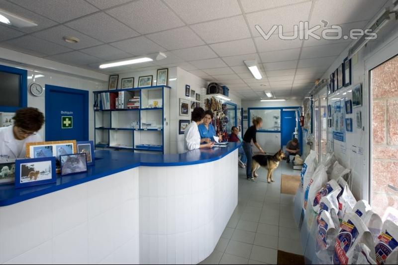 Foto clinicas veterinarias teran - Diseno de clinicas veterinarias ...