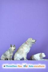 Inmortaliza tinmortaliza tu mascota - foto-esculturas de animales - threedee-you foto-escultura 3d-u