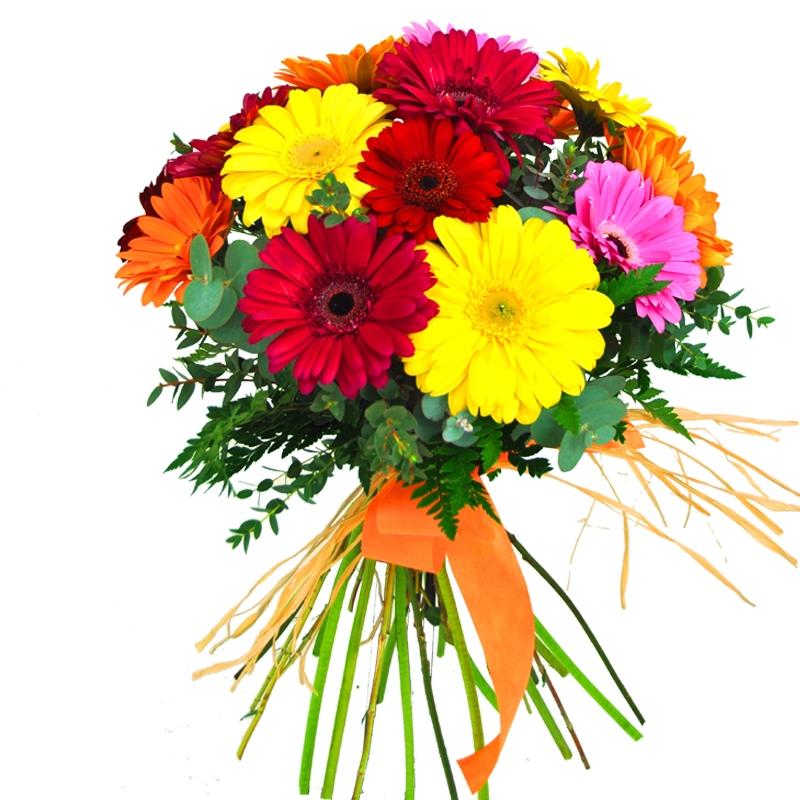 Barna flor for Jardineria a domicilio barcelona