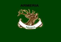 ARMERIA MEDINA SPORT