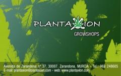Grow shop plantaxion - foto 19