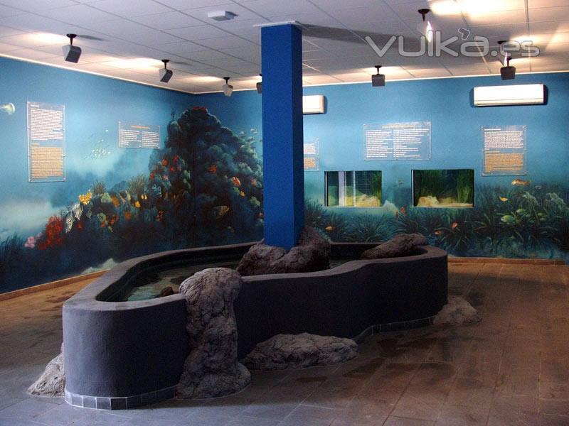 Foto dise o y ejecucion acuarios publicos for Disenos de acuarios