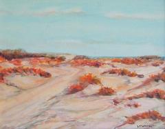 Caminito de la playa (�leo-lienzo 25x37cm)