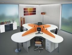 Realizaci�n de oficinas, instalando redes inform�ticas, etc,,,, para su correcto funcionamiento.