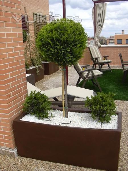 Foto decoraci n de tico con plantaci n y jardineras for Como decorar una jardinera
