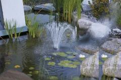 Colocaci�n de elemento de decoraci�n en estanque de lateral de chalet privado