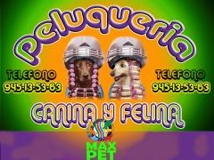 Peluqueria Canina Vitoria MAX PET