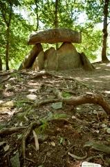 Dolmen de dombate - restos celtas
