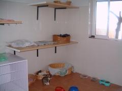 Habitaciones de gatos