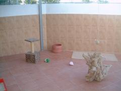 Patio cerrado con malla para las habitaciones de gatos