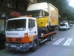 Foto 338 seguros - Gruas Silvia