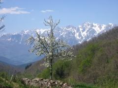 Picos de europa desde cahecho
