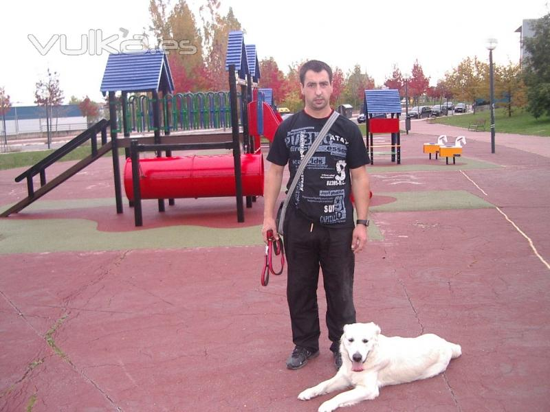 DOG TRAINNING LOS CHARROS