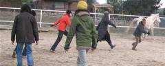 Actividades asistidas con caballos para potenciar el teambuilding
