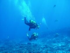 Dive center corralejo, s. l. - foto 19