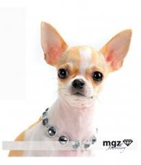 Resalta la belleza de tu perro con este collar en metal cromado  con cristales tallados imitando circonitas y ...
