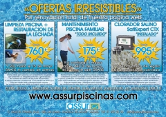 Assur Piscinas - Ofertas Increibles en www.assurpiscinas.com