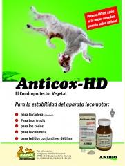 Condroprotector vegetal para problemas de articulaciones, traumatismos, etc. recomendado por fisioterapeutas ...