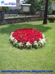 Oferta en plantas exterior...llamanos.......visita : losamigospiscinas.blogspot.com