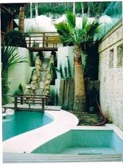 Conjunto palmera/cascada/piscina