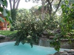 Detalle piscina con cascada