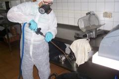 Lloret 3D Tecnico cualificado en control de plagas  Especialistas en tratamientos contra la carcoma y termitas  limpiezas generales