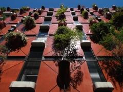 En un mundo de espacios reducidos para construcción y jardines  con la creciente contaminación, hay que ser ...
