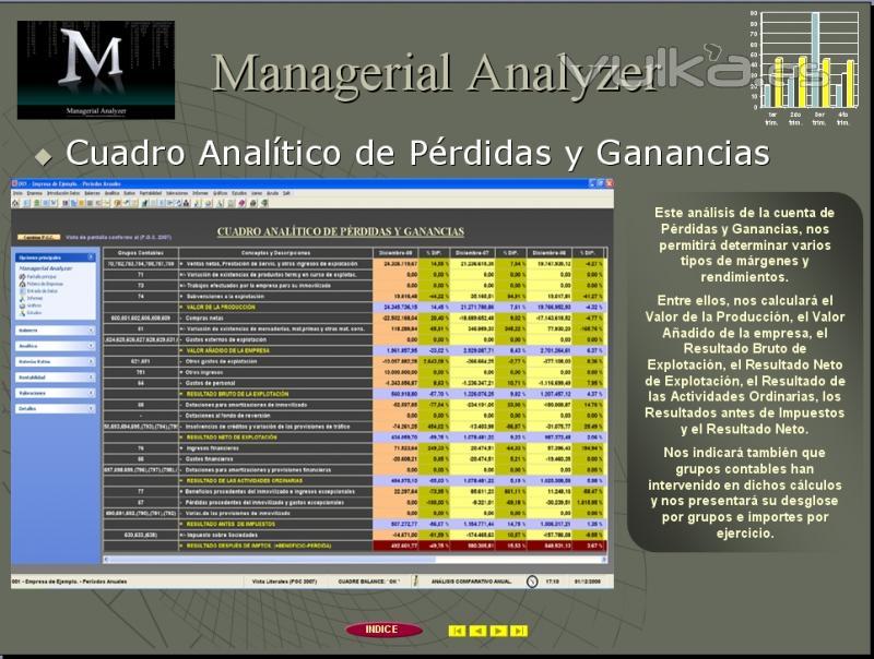 Cuadro Anal�tico de P�rdidas y Ganancias.