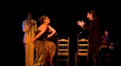Flamenco in valencia, la buleria, flamenco show in valencia