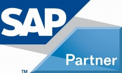 Sap partner - business one