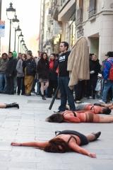 Flashmod contra el uso de pieles, barcelona