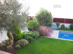 Jardin sostenible vilobi. barcelona