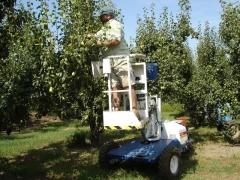 Tp-150 plataforma aricola epecial para la poda de arboles hasta 5 metros