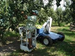 Tp-150 recoleccion de fruta