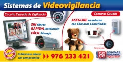Sistemas de Video-Vigilancia