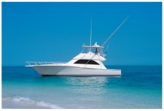 Viking 48 barco a motor: http://www.exclusiveboats.es/viking-48.html