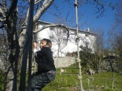 Huerta para actividades con arboles frutales y juegos infantiles.