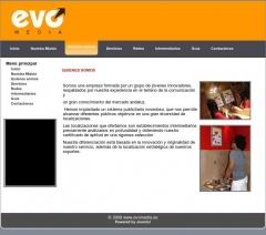 Diseño y desarollo de páginas web para empresas