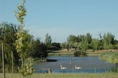La laguna del parque