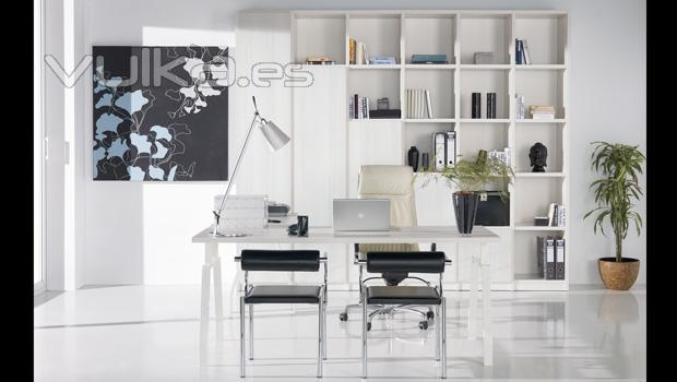 Despachos modernos decoraci n del hogar for Despachos modernos