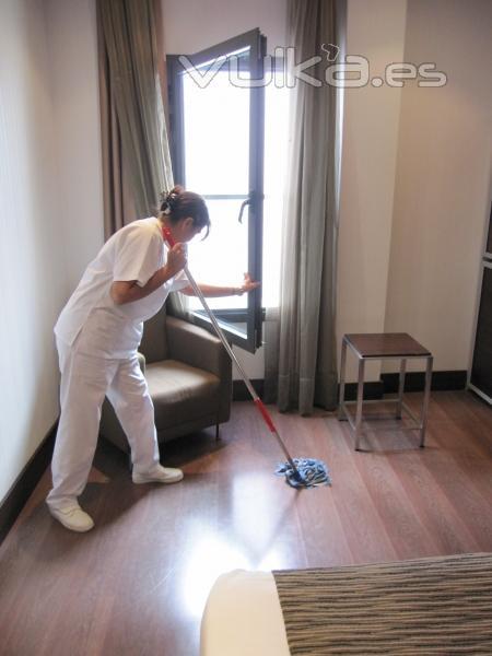 Aecetia - Servicios del limpieza del hogar