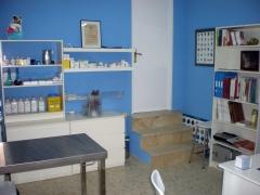 Centro veterinario vital pets - foto 11