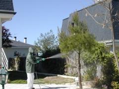 Fumigación jardines