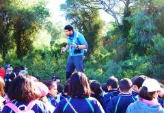 Motivando la grandeza del parque natural del saler en valencia