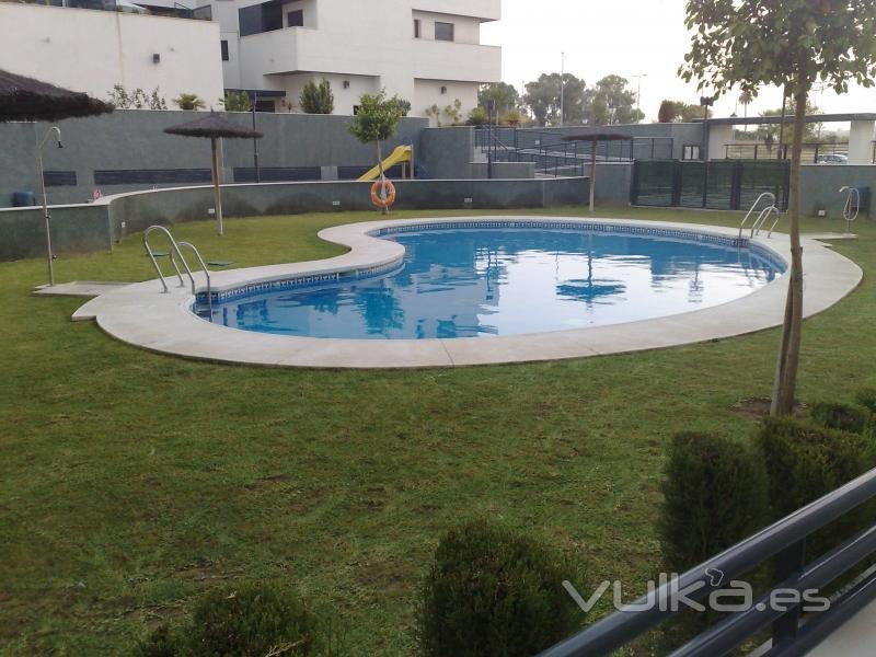 Foto comunidad mantenida por jarpisur con jardin y piscina for Jardines y piscinas borrego