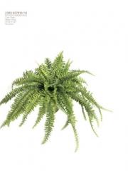 Helechos artificiales de calidad. oasisdecor.com gran surtido en plantas artificiales.