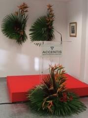 Mayula flores - eventos