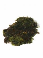 Musgo natural en bolsa. oasisdecor.com