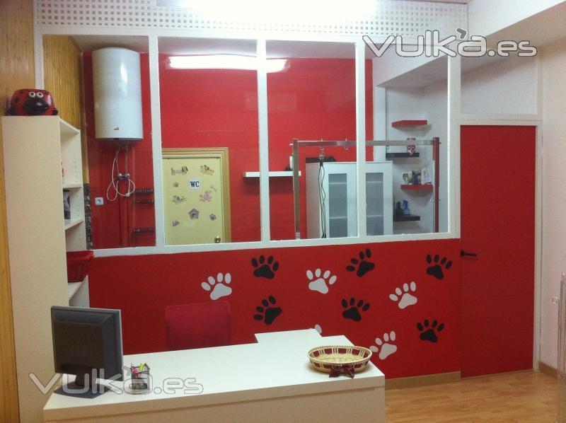 Foto nuestras instalaciones - Ideas para decorar una peluqueria ...